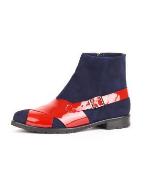 Ботинки RICCORONA. Цвет: синий, красный