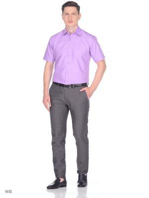 Рубашка CARAT.. Цвет: сиреневый, фиолетовый