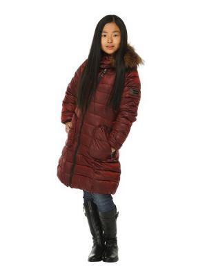 Пальто для девочек TOPKLAER. Цвет: бордовый