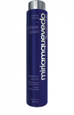 Шампунь для окрашенных волос с экстрактом черной икры Miriamquevedo. Цвет: бесцветный