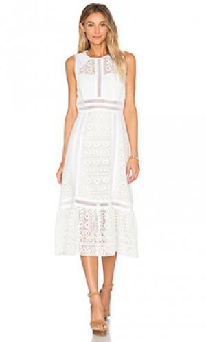 Кружевное платье с открытой спиной Twelfth Street By Cynthia Vincent. Цвет: белый