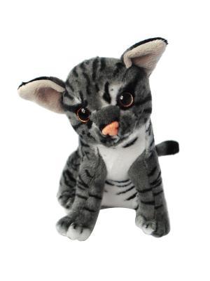 Мягкая игрушка Кот, Котенок Полосатик, 22 см АБВГДЕЙКА. Цвет: серый