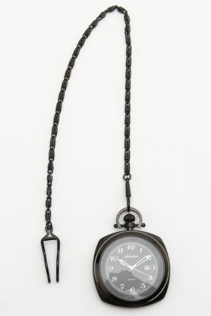 Часы наручные Adriatica. Цвет: черный