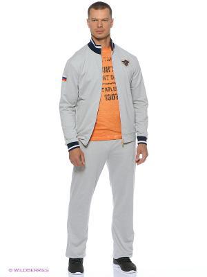 Спортивный костюм Stayer. Цвет: серый