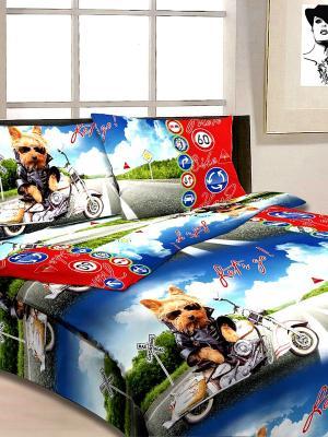 Комплект постельного белья Супербайк Letto. Цвет: синий, голубой