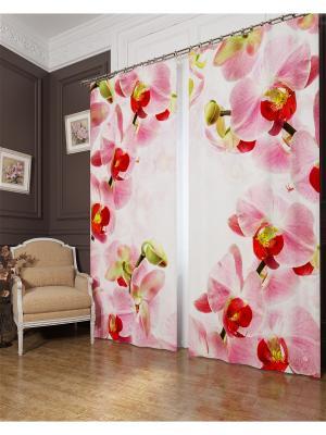 Фотошторы Молодые орхидеи, Блэкаут Сирень. Цвет: розовый, желтый, белый, зеленый, серый, бежевый, красный