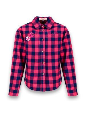 Рубашка De Salitto. Цвет: синий, фуксия