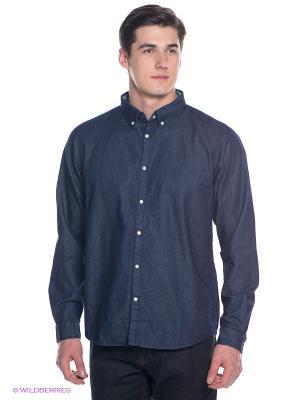 Рубашка BRUNOTTI. Цвет: синий