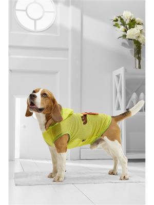 Жилет для собак Nothing but Love. Цвет: желтый, оранжевый, салатовый