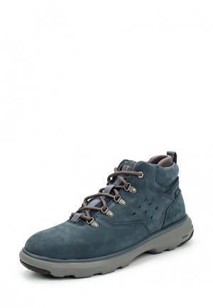 Ботинки Caterpillar. Цвет: синий