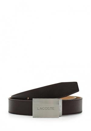 Ремень Lacoste. Цвет: коричневый