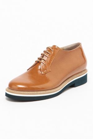Ботинки GIORGIO MALLARDI. Цвет: коричневый