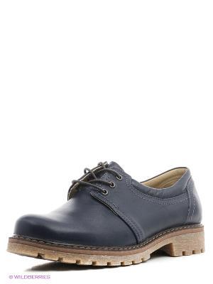 Ботинки Walrus. Цвет: синий