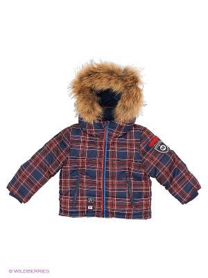 Куртка Junior Republic. Цвет: красный, синий