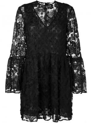 Кружевное платье Perseverance London. Цвет: чёрный