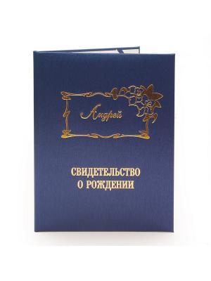 Именная обложка для свидетельства о рождении Андрей Dream Service. Цвет: синий