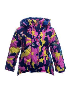 Куртка Bonito kids. Цвет: синий, желтый
