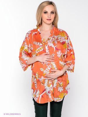 Блузка UNIOSTAR. Цвет: оранжевый, белый