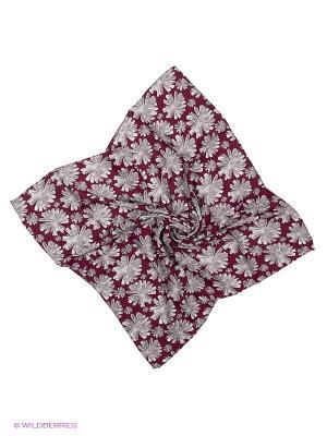 Платки Vittorio Richi. Цвет: серый, бордовый