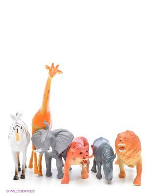 Набор В мире животных 1Toy. Цвет: оранжевый, белый, серый