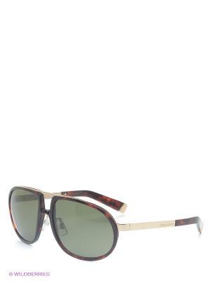 Солнцезащитные очки DQ 0025 54N Dsquared. Цвет: коричневый