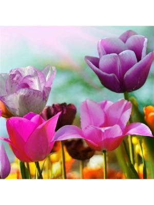 Декоративная наволочка Весеннее чудо  Рапира. Цвет: розовый, желтый, зеленый