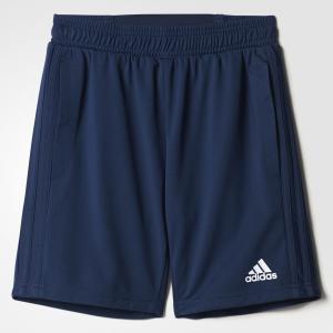 Спортивные шорты (трикотаж) TIRO17 TRG SHOY  Performance adidas. Цвет: белый