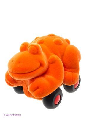 Лягушка Rubbabu. Цвет: оранжевый