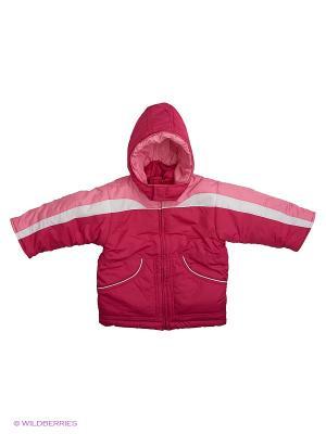 Куртка Babycollection. Цвет: малиновый, белый