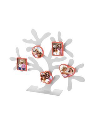 Набор магнитных фоторамок Дерево счастья. Цвет: красный