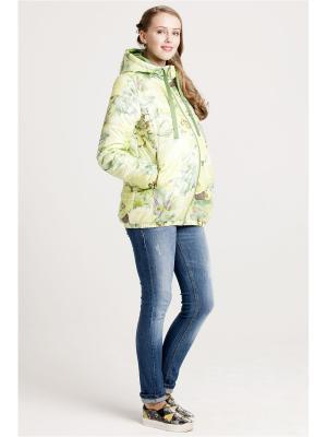 Куртка Modress. Цвет: салатовый, светло-желтый