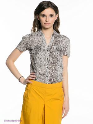 Блузка Finn Flare. Цвет: серый, коричневый