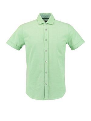 Рубашка Florentino. Цвет: светло-зеленый