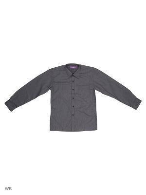 Рубашка CARAT.. Цвет: черный