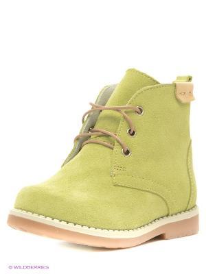 Ботинки San Marko. Цвет: светло-зеленый