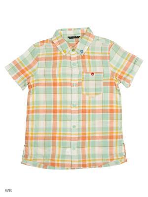 Рубашка Sisley Young. Цвет: салатовый, белый, желтый