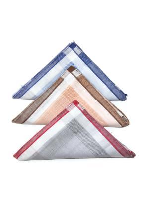 Носовой платок, 3 шт Lola. Цвет: синий, бордовый, персиковый