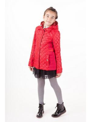 Куртка Руслана Батик. Цвет: малиновый
