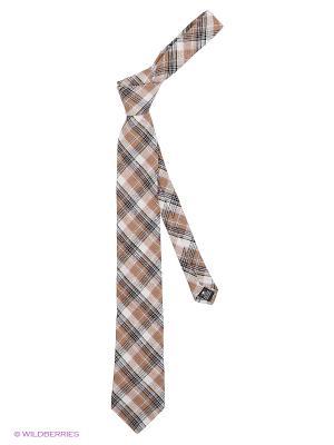 Галстук Alex DANDY. Цвет: бирюзовый, бежевый, коричневый, молочный, светло-бежевый, светло-коричневый