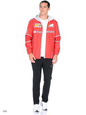 Куртка SF Team Jacket Puma. Цвет: красный