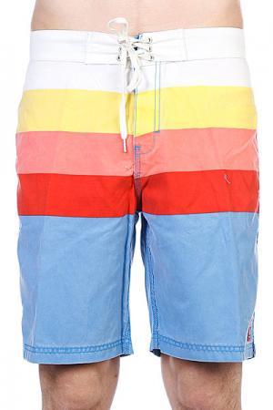 Пляжные мужские шорты  Retro Daze Artline Blue Insight. Цвет: белый,синий,красный,желтый