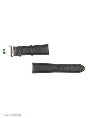 Ремень для часов, им.АЛЛИГАТОРА, с клипсой, черный, 24 х 20 мм. J.A. Willson. Цвет: черный