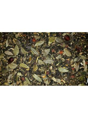Иван-чай Диабетический. Цвет: сливовый