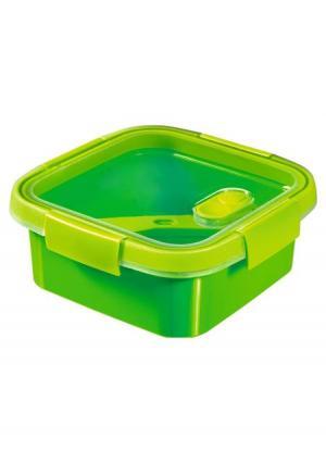 Контейнер пищевой с приборами CURVER. Цвет: зеленый, фиолетовый