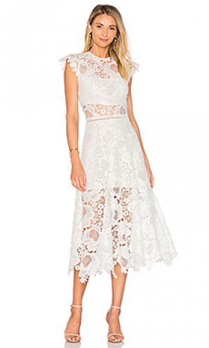 Платье-кроше doriane Karina Grimaldi. Цвет: белый