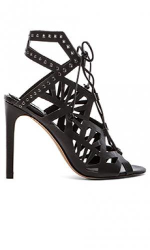 Туфли на каблуке helena Dolce Vita. Цвет: черный
