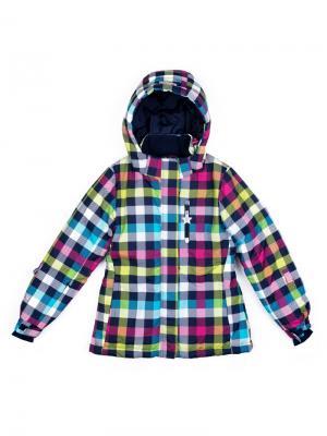 Куртка S`Cool. Цвет: синий, белый, светло-зеленый