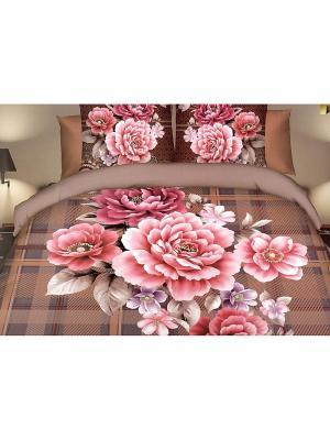 Комплект постельного белья Хризантемы Евро La Pastel. Цвет: коричневый, розовый