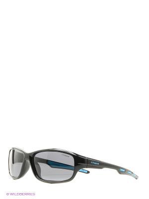 Солнцезащитные очки Polaroid. Цвет: черный, голубой