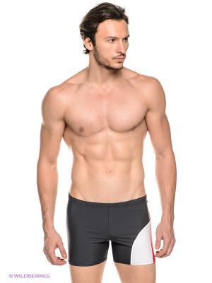 Плавки-шорты EMDI. Цвет: черный, красный